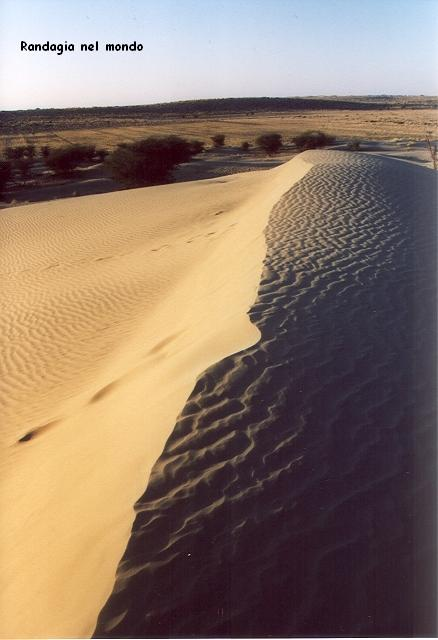 jaisalmer, the desert 2