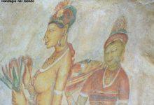 Dambulla / Sigiriya e trasferimento a Polonnaruwa